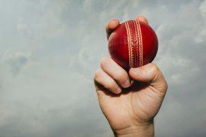 various-ball-cricket-sport